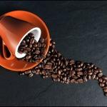 kaffekursus i København og Århus
