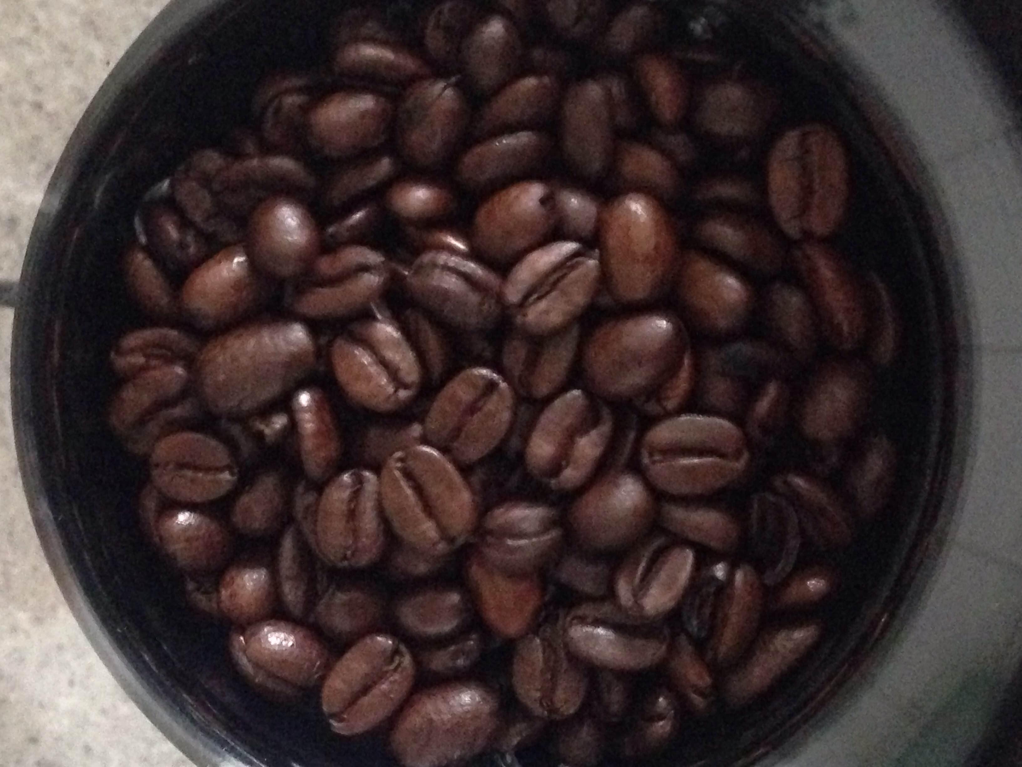 Severin kaffekværnen har en stor beholder til kaffebønner.